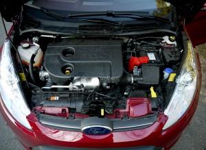 Ford Fiesta 1.6 TDCi motor, Rubén Fidalgo